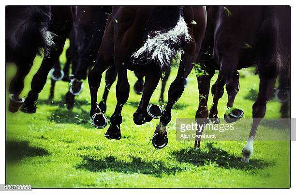 A general view of horses hooves during day one of Royal Ascot at Ascot Racecourse on June 17 2014 in Ascot England