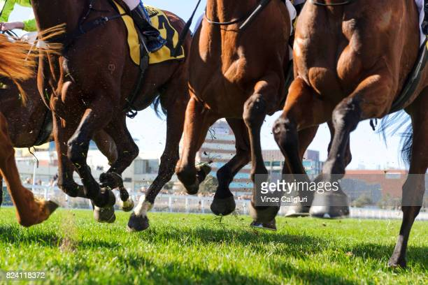 General view of horses kicking up the turf in Race 2 during Melbourne Racing at Caulfield Racecourse on July 29 2017 in Melbourne Australia