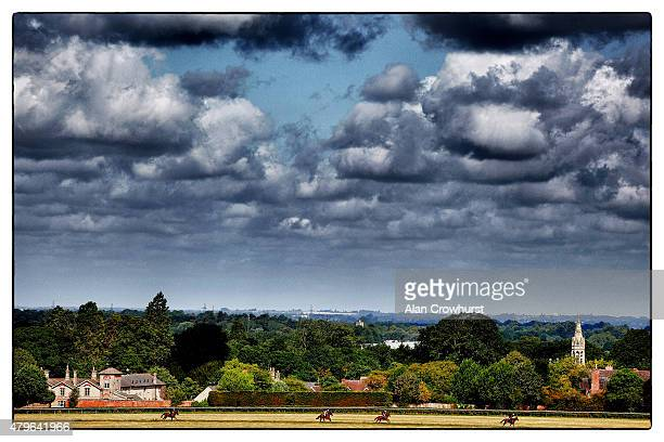 A general view of horses on Long Hill gallop in Newmarket on July 06 2015 in Newmarket England
