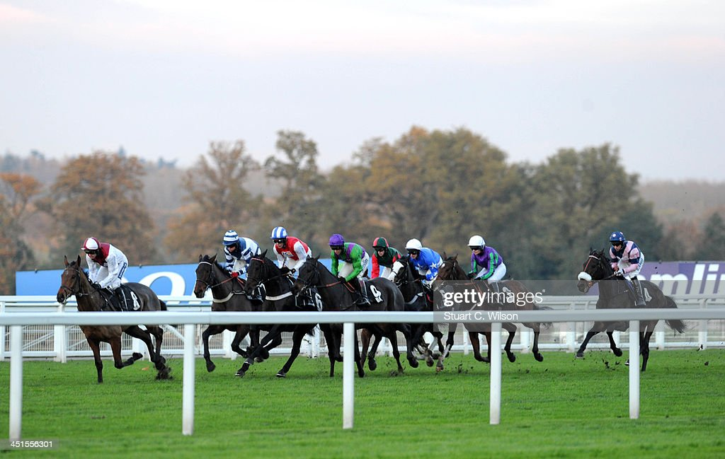 General view of horses racing during the Harriet Roberts Memorial Standard Open National Hunt Flat Race at the Ascot November Meeting featuring the Christmas Shopping Village at Ascot Racecourse on November 23, 2013 in Ascot, England.