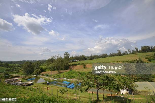 General view of Jafi Enterprise fish's farm on April 24 in Lurambi Kakamega County western Kenya This project is a beneficiary of Africa Solidarity...