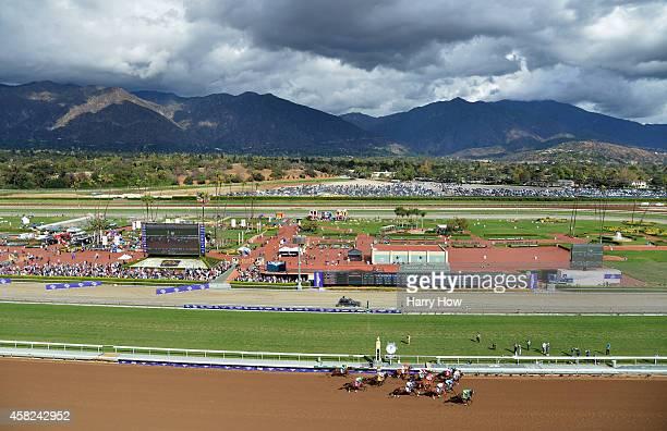 A general view of jockeys and horses racing during the 2014 Sentient Jet Breeders' Cup Juvenile at Santa Anita Park on November 1 2014 in Arcadia...