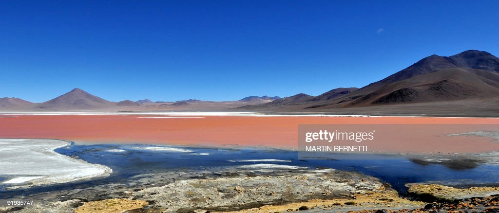 A general view of Laguna Colorada located in the Eduardo Abaroa Andean National Fauna Reserve in the highlands of San Luis, near the border with Chile, in the Uyuni salt flats, Bolivia on October 7, 2009. The Uyuni salt flats are estimated to contain 10 billion tons of salt - of which 25,000 tons are extracted every year - as well as 100 million tons of lithium, making it one of the largest global reserves of this mineral, according to state officials at the Bolivian Mining Corporation (COMIBOL). The salt flats are a major tourist attraction in Bolivia, with around 60 thousand tourists visiting them every year, where one can find various types of flamingos, giant cacti, geysers, hot springs, volcanoes and colorful ponds. AFP PHOTO/Martin Bernetti - MORE