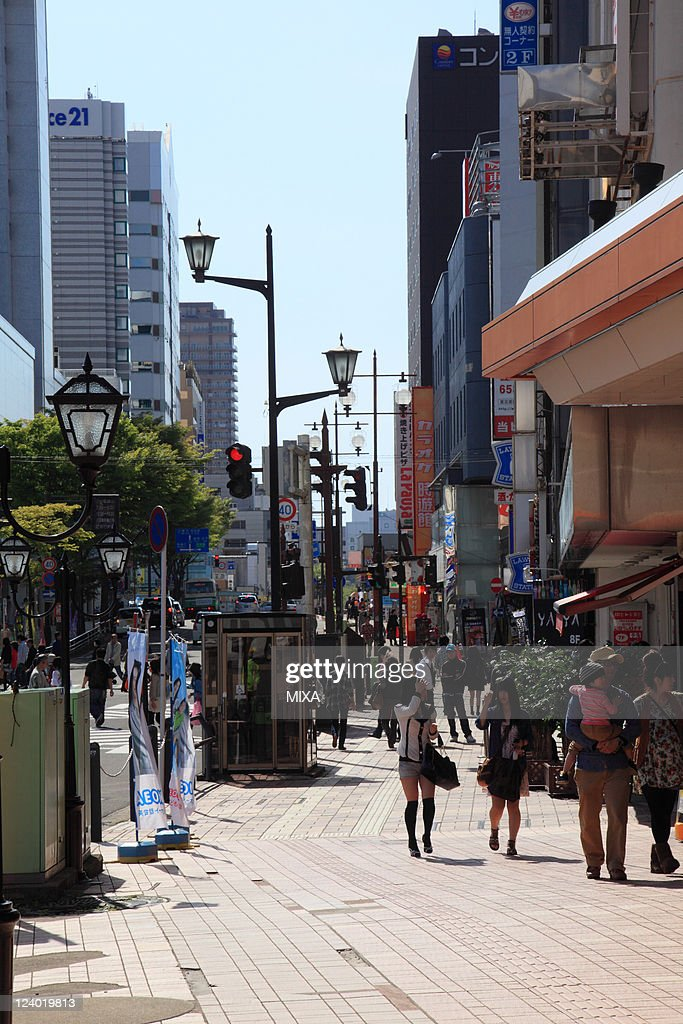 A general view of main street of Akita City on May 15, 2010 in Akita City, Akita, Japan
