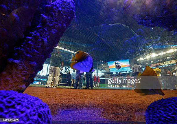 A general view of Marlin's Park through the fishtank behind home plate during Opening Day between the Miami Marlins and the St Louis Cardinals at...