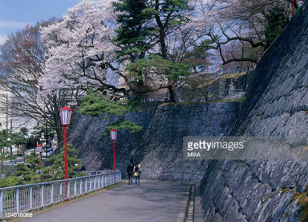 A general view of Morioka Castle Park and cherry blossoms on April 1 2009 Morioka Iwate Japan