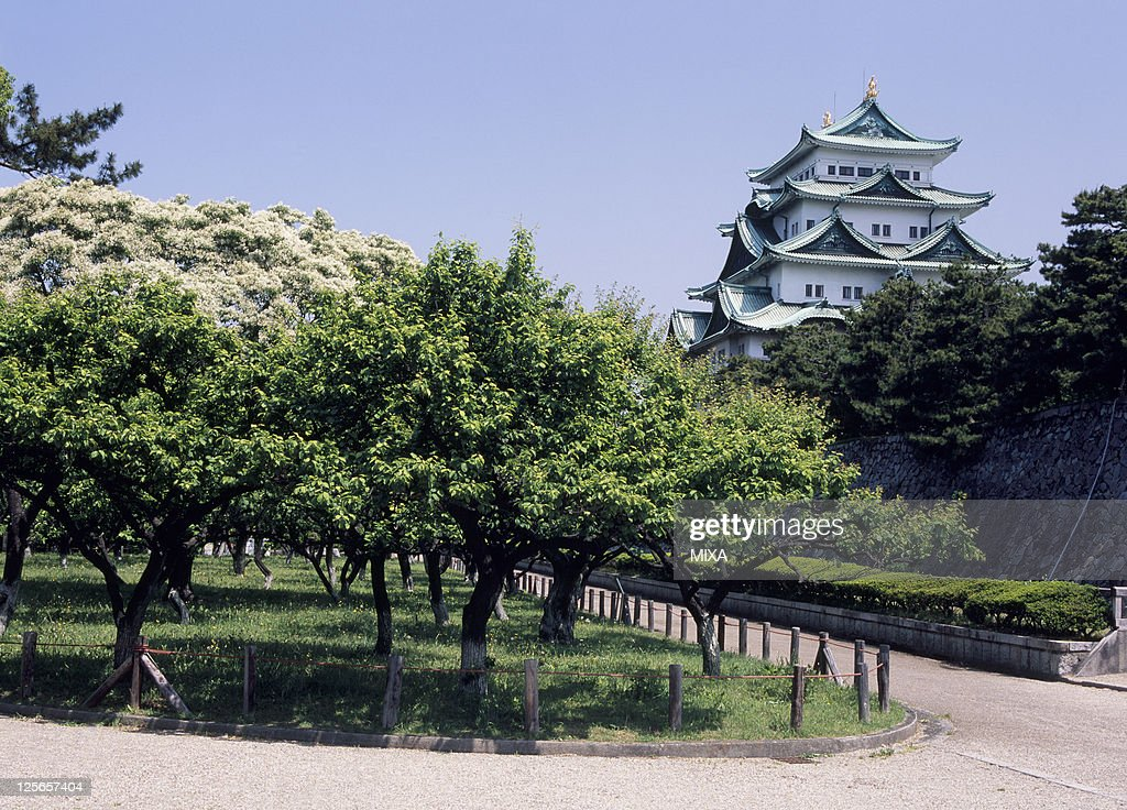 A general view of Nagoya Castle on March 1 2008 in Nagoya Aichi Japan