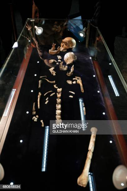 A general view of ÒNEOÓ a new skeleton fossil findings of the Homo Naledi Hominin species is seen at the cradle of Human Kind in Maropeng near...