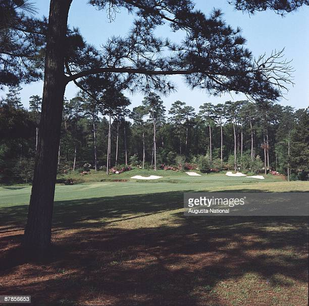 Augusta National Amen Corner Stock Photos And Pictures