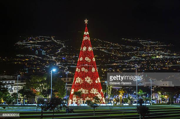 General view of one Christmas tree of lights on December 29 2016 in Funchal Madeira Portugal