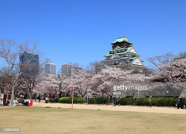 A general view of Osaka Castle and cherry blossoms on April 8 2010 in Osaka Japan