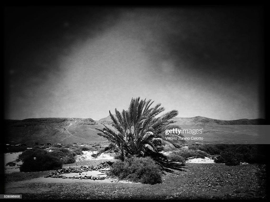 A general view of Parque Natural de los Ajaches on April 25, 2016 in Lanzarote, Spain.