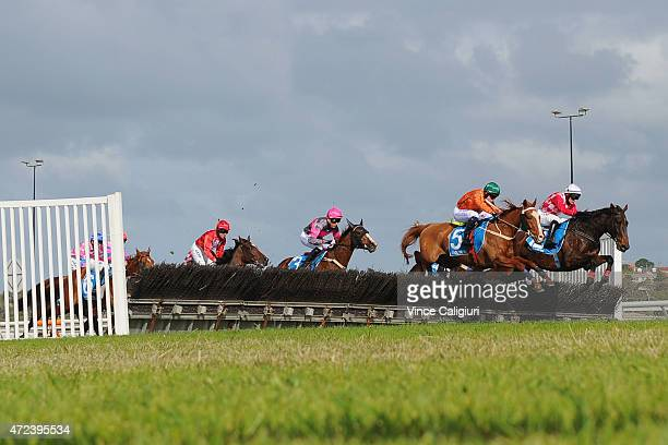 General View of Race 5 the Hammonds Champion Novice Hurdle during Grand Annual Day at Warrnambool Racing Club on May 7 2015 in Warrnambool Australia
