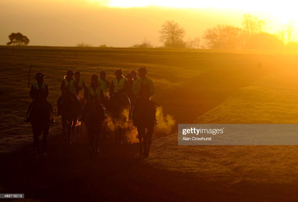 A general view of racehorses on Newmarket Heath as the sun begins to rise in Newmarket on April 10, 2014 in Lingfield, England.
