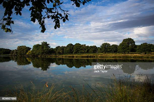 A general view of Richmond Park on September 22 2016 in London England Today marks the first day of autumn also known as the autumn equinox where...
