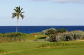 General view of the 13th green during the Virgin Atlantic PGA National ProAm Championship Practice Round at Sandals Emerald Bay Resort on November 26...