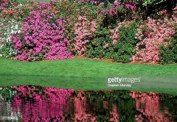 General view of the 13th hole with the Azaleas taken during the 1992 US Masters held in April 1992 at the Augusta National Golf Club in Augusta...