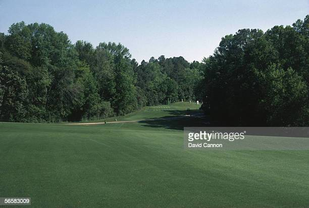 General view of the 5th hole fairway to the tee taken during a photocall held at the Augusta National Golf Course in Augusta USA