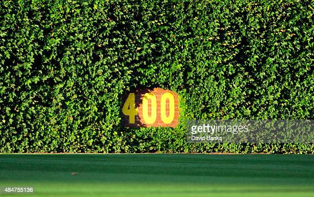 A general view of the center field ivy before a game between the Chicago Cubs and the Atlanta Braves on August 20 2015 at Wrigley Field in Chicago...