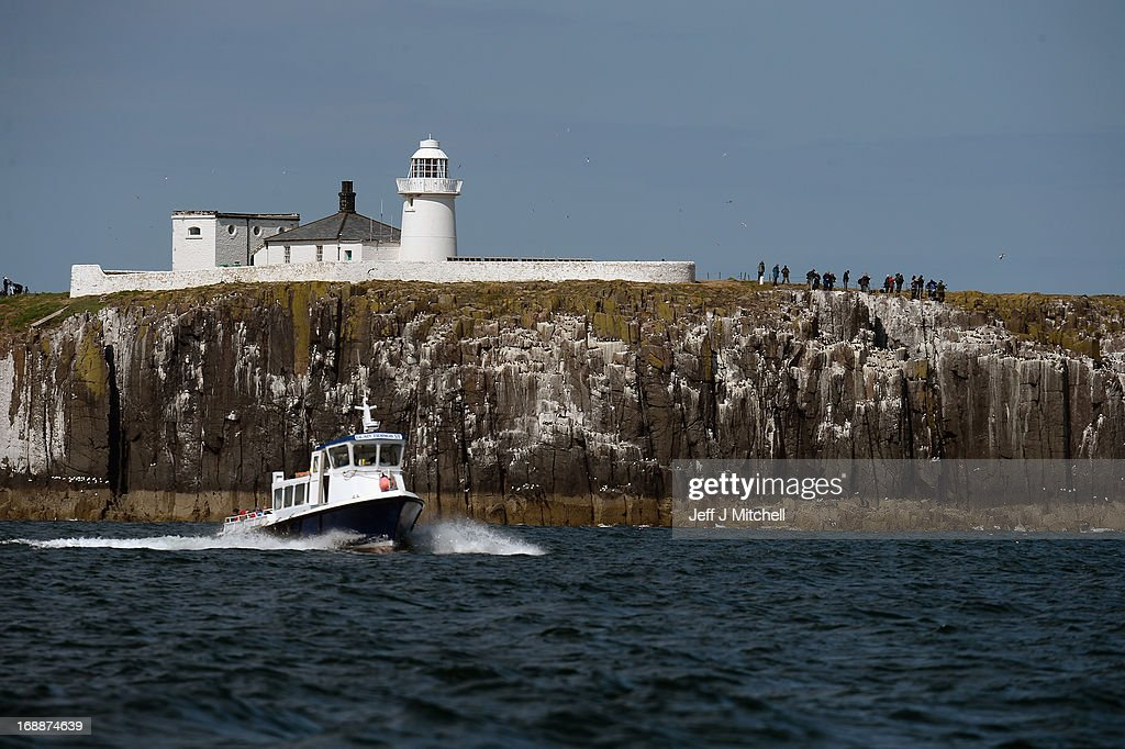 A general view of the Farne Islands where Puffins are returning to their summer breeding grounds on May 16 2013 in the Farne Islands England A census...