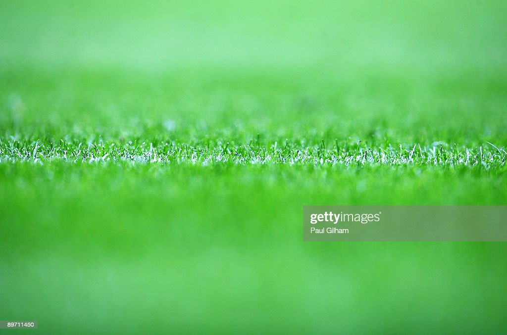 A general view of the green grass on the pitch during the Bobby Moore Cup between West Ham United and Napoli at Upton Park on August 8, 2009 in London, England.