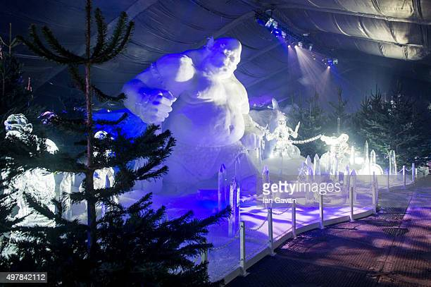 General view of the ice sculptures during the photocall for the opening of 'The magical Ice Kingdom' at Hyde Park's Winter Wonderland at Hyde Park on...