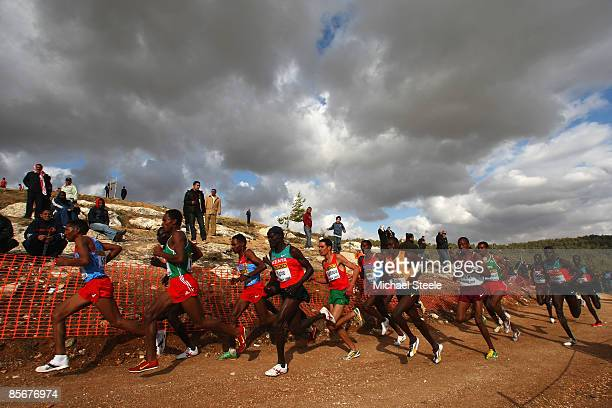 General view of the leading pack during the men's senior race at the 37th IAAF World Cross Country Championships at the Bisharat Golf Club on March...