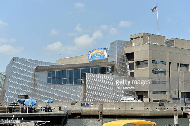 A general view of the New England Aquarium on July 2 2014 in Boston