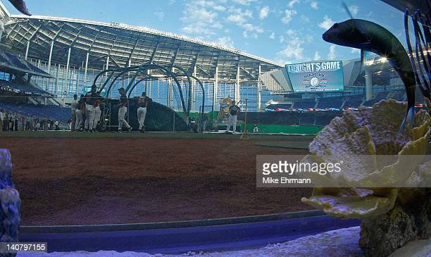 A general view of the new Marlins Ballpark shot throught a fishtank behind home plate during a game between the Miami Marlins and the University of...