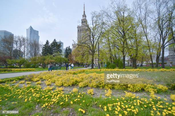 A general view of the Palace of Culture and Science the tallest building in Poland On Tuesday April 26 in Warsaw Poland
