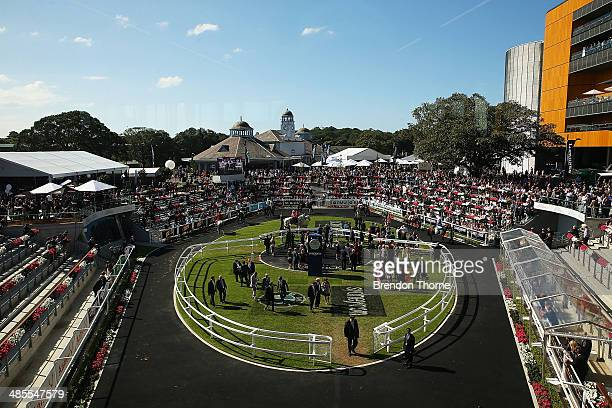 A general view of the parade ring ahead of race 3 Girvan Waugh Royal Randwick Stakes during Day Two of The Championships at Royal Randwick Racecourse...
