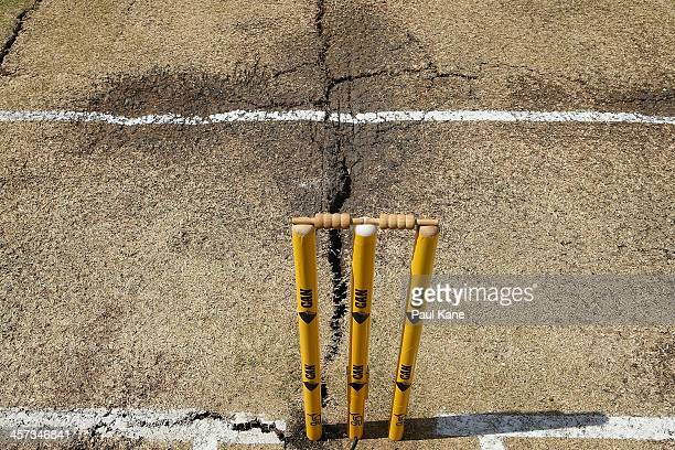 A general view of the pitch before start of play on day five of the Third Ashes Test Match between Australia and England at the WACA on December 17...