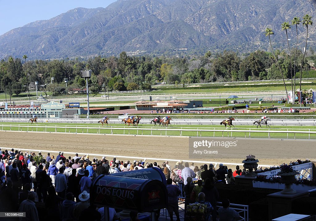 A general view of the race as the horses approach the finish line at Reality TV Personality Josie Goldberg and her race horse SpoiledandEntitled's race at Santa Anita Park on February 24, 2013 in Arcadia, California.