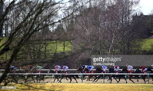 A general view of the racing during the All Weather Championships Finals Day at Lingfield Park on March 25 2016 in Lingfield England