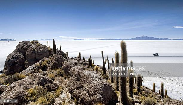 A general view of the salt flats seen from Fish Island shows an SUV driving across the Uyuni salt flats Bolivia on October 6 2009 The Uyuni salt...