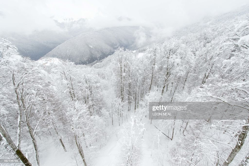 General view of the show-covered trees and mountains above Rosa Khutor, one of the 2014 Winter Olympics venues, in the Black Sea city of Sochi on February 19, 2013. With a year to go until the Sochi 2014 Winter Games, construction work continues as tests events and World Championship competitions are underway.