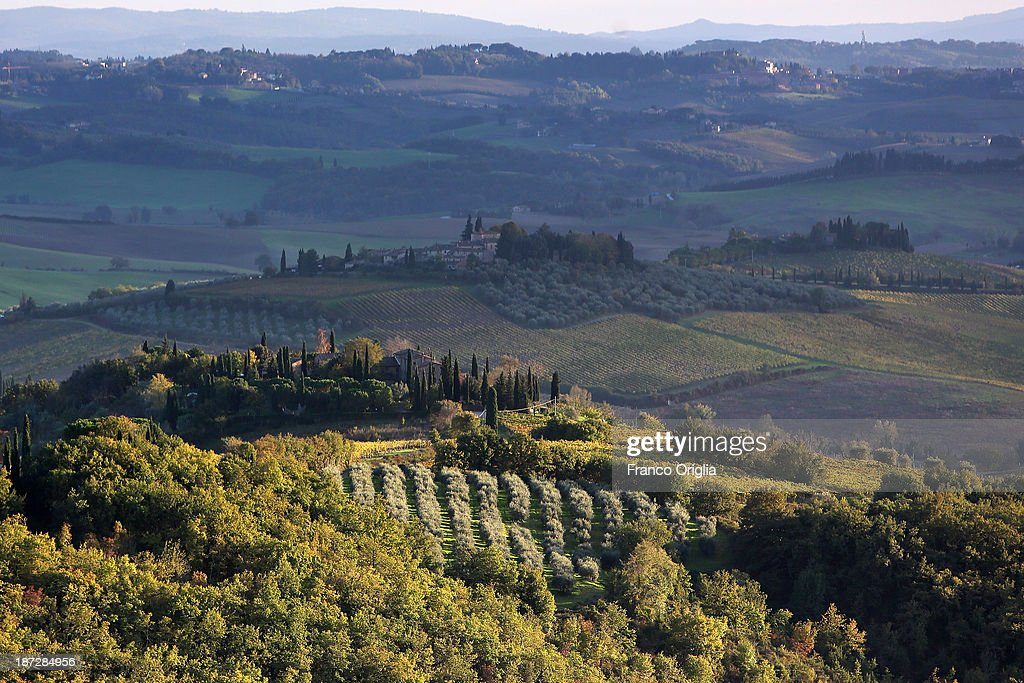 A general view of the Tuscan landscape during the harvesting of olives on November 7, 2013 in Castellina in Chianti (Siena), Italy. An optimal climate, fertile land and skilled hands make Tuscan extra virgin olive oil one of the most popular food product in and outside of Italy.