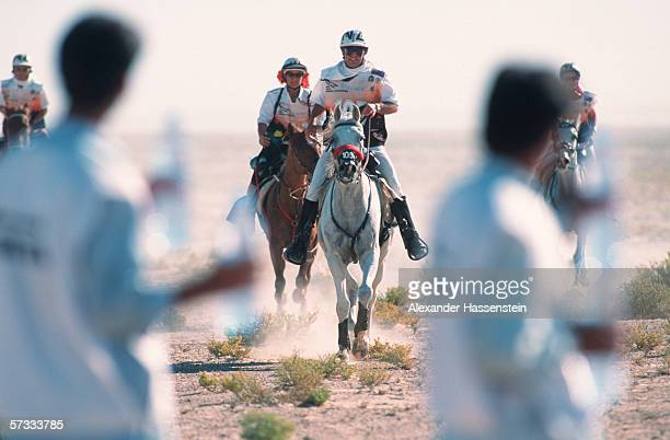 A general view of the World Endurance Race 1998 on December 10 1998 in Dubai United Arab Emirates
