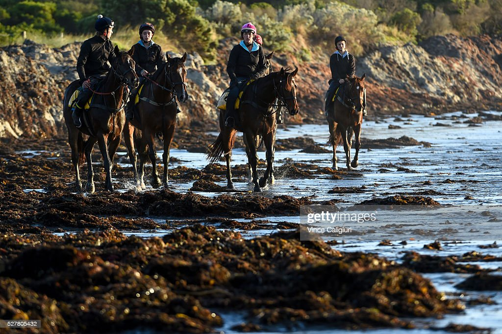 General view of trackwork session at Lady Bay beach ahead of day two of the Warrnambool Racing Carnival on May 04, 2016 in Warrnambool, Victoria. Riders gallop the horses up and down the foreshore before cooling the horses in the ocean.