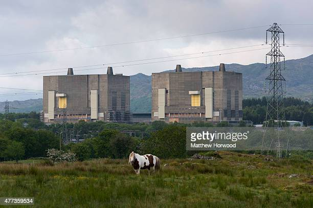 A general view of Trawsfynydd nuclear power station in Gwynedd Wales on June 16 2015 in Trawsfynydd Wales The power station was shut down in 1991 and...