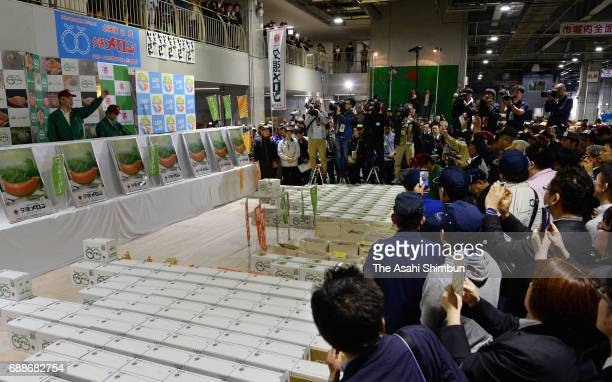 A general view of 'Yubari Melon' first auction of the season at Sapporo City Wholesale Market on May 26 2017 in Sapporo Hokkaido Japan A pair of...