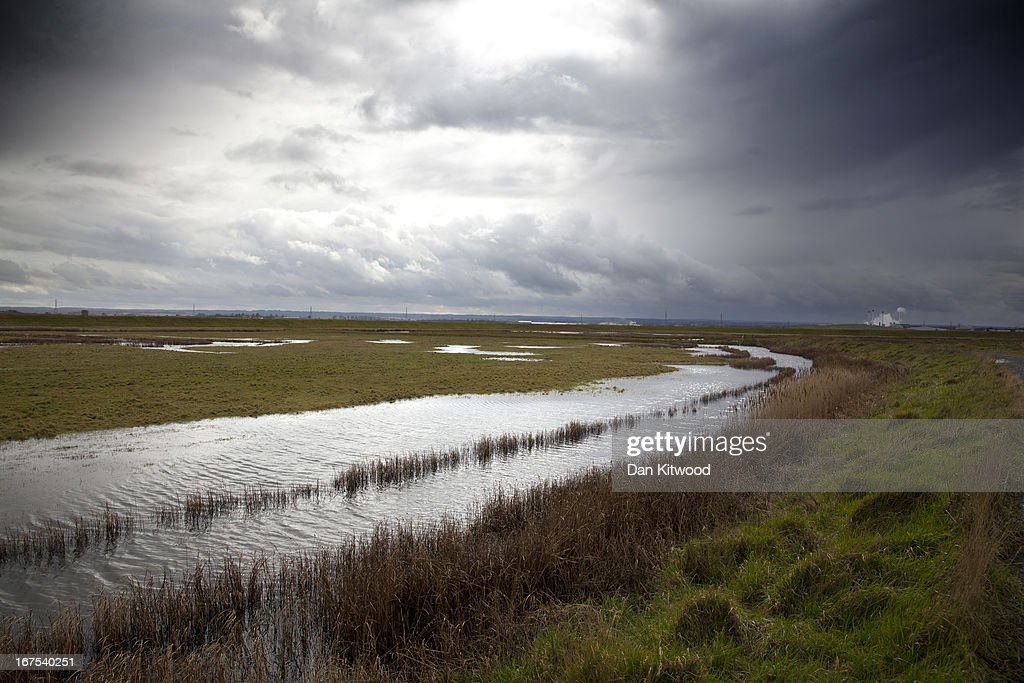 A general view over Elmley Marshes on April 12, 2013 in Sheerness, England. The RSPB's Elmley Marshes lies on the Isle of Sheppy, and is managed by the Elmley Conservation Trust. The three and a half acre reserve has the highest density of breeding waders in southern England including Avocet and Redshank. The area is also known to be one of the best sites in the UK to view birds of prey which include Peregrine Falcon, Marsh and Hen Harriers, Rough Legged Buzzards and Short Eared Owl.