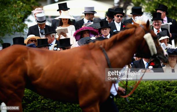 A general view racegoers viewing horses in the PreParade Ring during day four of Royal Ascot 2014 at Ascot Racecourse on June 20 2014 in Ascot England