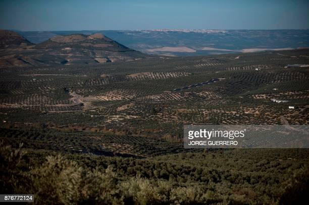A general view shows droughtstricken Albanchez de Magina near Jaen on November 20 2017 Spain and Portugal are grappling with a devastating drought...