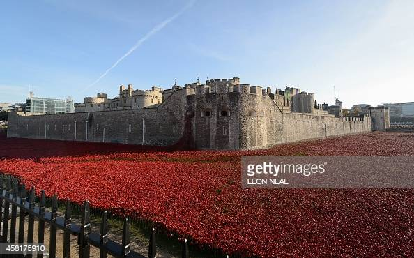 A general view shows the 'Blood Swept Lands and Seas of Red' installation by ceramic artist Paul Cummins and theatre stage designer Tom Piper marking...