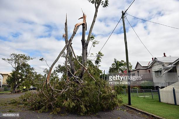 A general view shows tree branches torn down by Tropical Cyclone Marcia in the northern Queensland town of Rockhampton on February 21 2015 Australia...