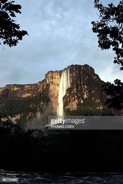 General view taken at dawn on September 13 2009 of the Angel Falls the world's highest waterfall with a height of 979 m near the village of Canaima...