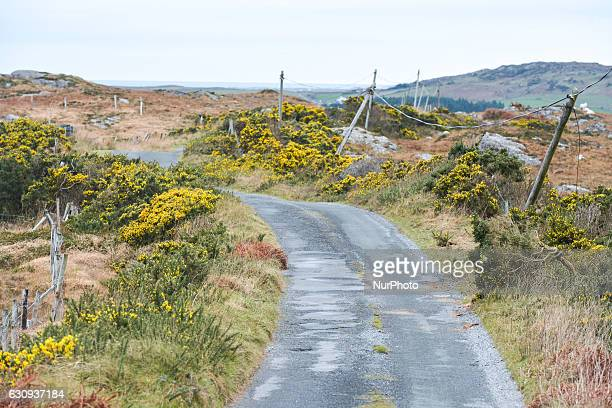 A general view Wild Atlantic Way on road 341 near Errislannon village in Connemara On Tuesday 3 January 2017 in Errislannon Connemara County Galway...