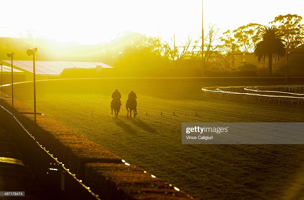 Generalife and Contributer gallop on the course proper during a trackwork session at Caulfield Racecourse on October 14 2014 in Melbourne Australia