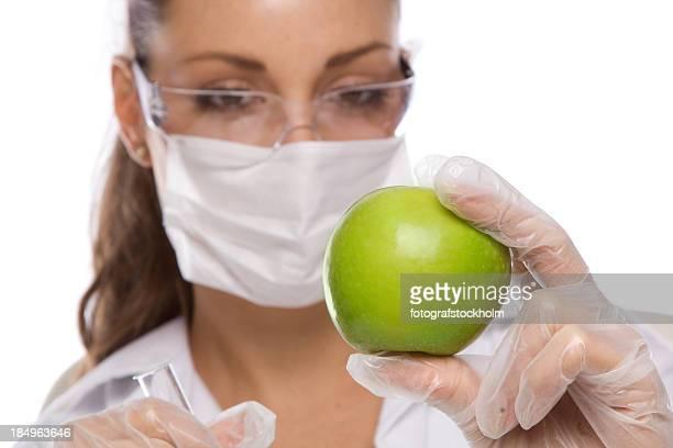 Genetic Modification GMO